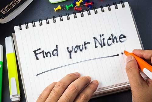 memilih-niche