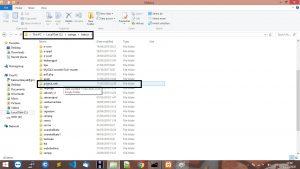 folder website pada xampp windows