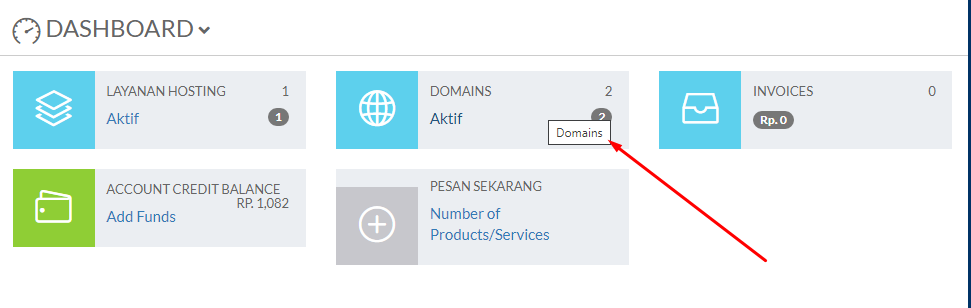 Cara Manage DNS Domain Dari Client Area